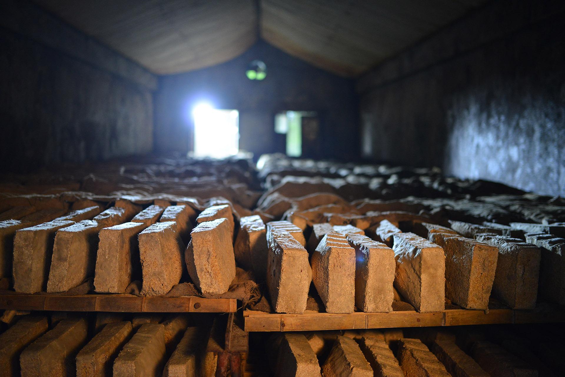 Ming River Baijiu - Bricks of Qu. Natural yeast cultures for baijiu fermentation